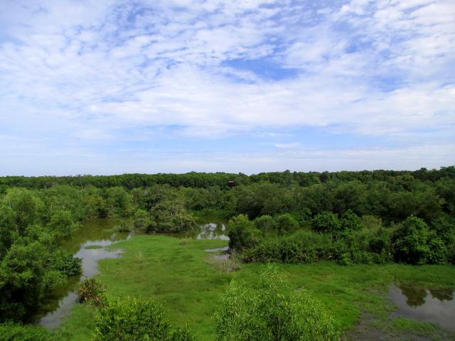 見晴らし台からの眺め (2景-1)