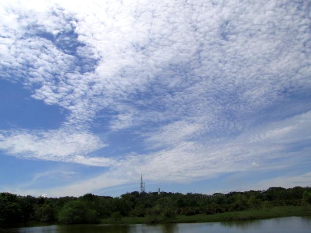見晴らし台からの眺め (2景-2)